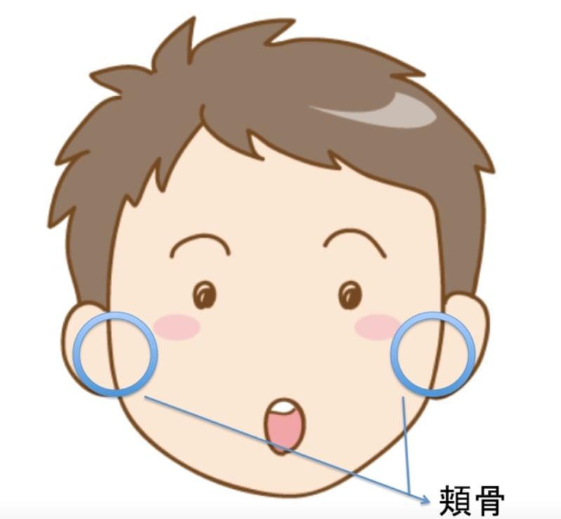 男の子で頬骨の場所を表している